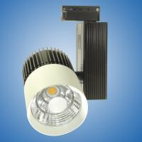 30W COB LED Track Lighting Design 1 Warm White